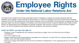 NLRB Employee Rights Notice Poster