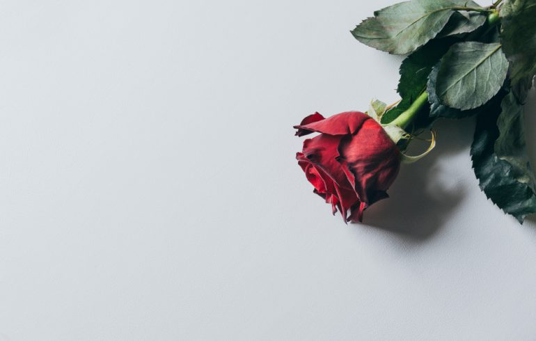 A Rose by Any Other Name: Making Sure Your Trade Name Smells as Sweet.