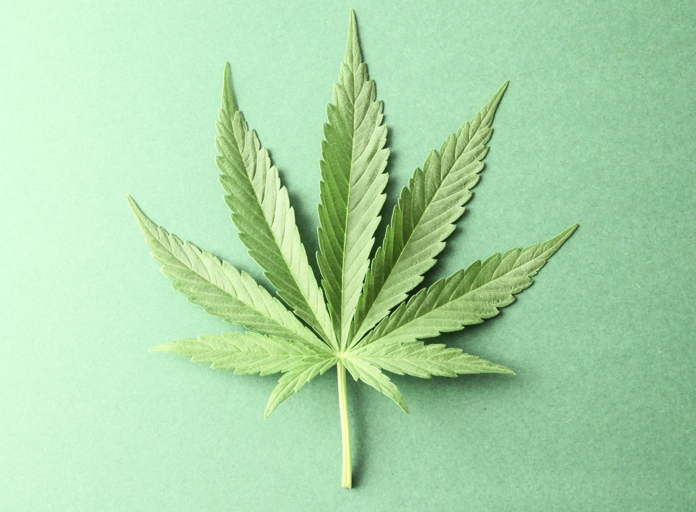 WHAT IMPACT WILL MEDICAL MARIJUANA HAVE ON MISSOURI WORKPLACES AND DRUG TESTING BY EMPLOYERS?